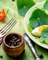 La mejor dieta que existe - Consejos de salud y nutrición